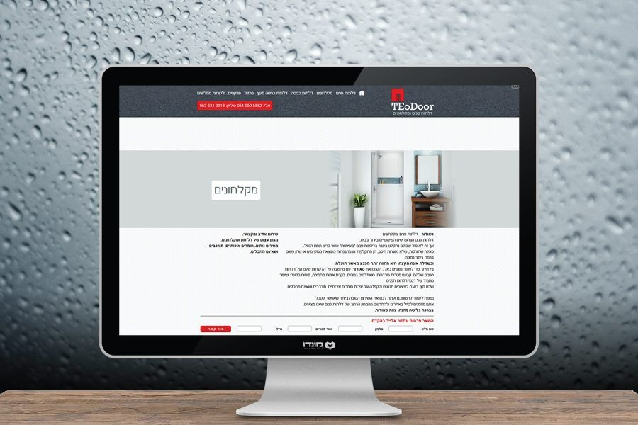 עיצוב אתר לטאודור