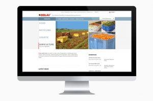 בניית אתרים ועיצוב גרפי